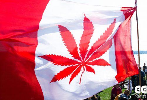 2-years-cannabis-canada.jpg