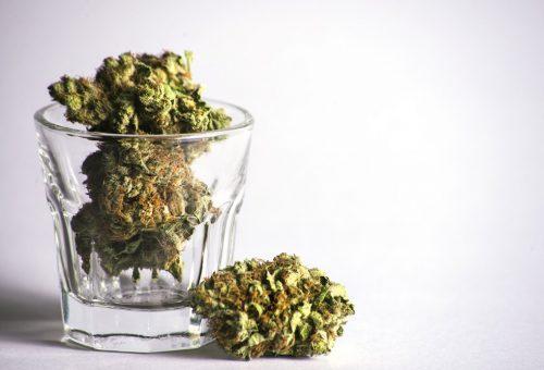 Cannabis-stocks-with-stellar-revenues-1.jpg