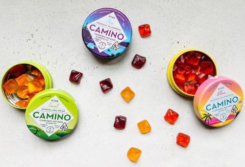 cannabis-2.0-edibles.jpg